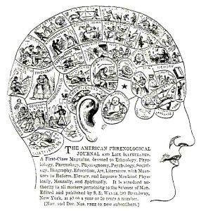 Каждый хотел, чтобы ему рассказали о его голове — за исключением, может быть, лишь тех, у кого бугры окружали уши. Это свидетельствовало о драчливости, страсти к разрушению, скрытности, жадности и чревоугодии